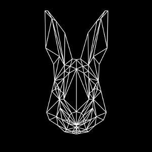 Rabbit on Black by Lisa Kroll