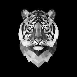 Tiger Head by Lisa Kroll