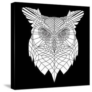 White Owl Mesh by Lisa Kroll
