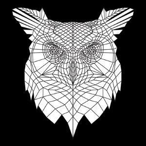 White Owl Mesh by Lisa Kroll