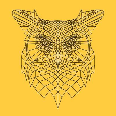 Yellow Owl Mesh
