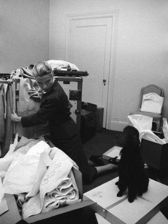 Actress Grace Kelly Packing for Wedding to Prince Rainer of Monaco While Pet Poodle Looks On