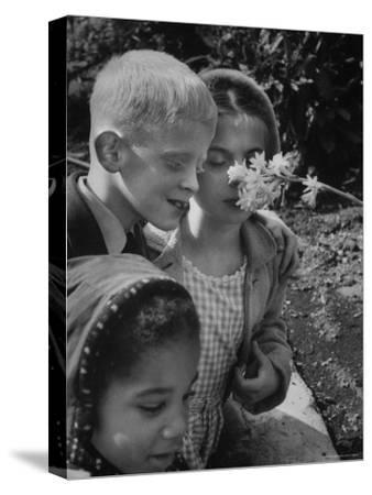 Blind School Children During an Outing in Brooklyn Botanical Gardens of Fragrance