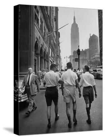 Three Young Businessmen Wearing Bermuda Shorts as They Walk Along Fifth Ave. During Lunchtime
