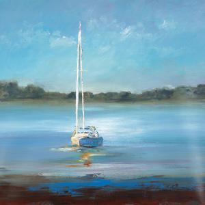 Safe Harbor by Lisa Ridgers