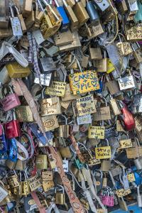 Bridge of love locks, Notre Dame, Paris, France by Lisa S. Engelbrecht