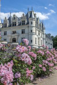 Chateau de Chenonceau, Chenonceaux, France by Lisa S. Engelbrecht