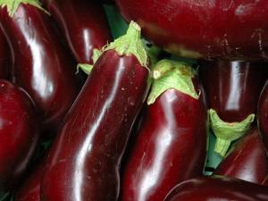 Eggplant For Sale at Market, Bellinzona, Switzerland by Lisa S. Engelbrecht