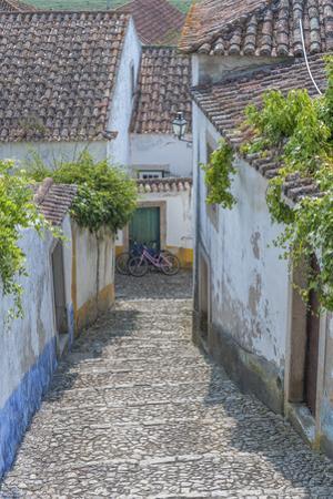 Europe, Portugal, Obidos, Cobblestone Steps by Lisa S^ Engelbrecht