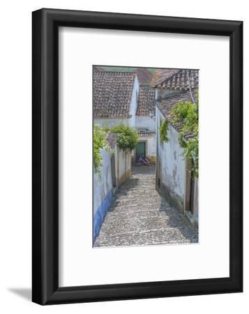 Europe, Portugal, Obidos, Cobblestone Steps