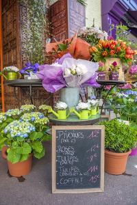 Florist shop, Cabourg, Normandy, France by Lisa S. Engelbrecht