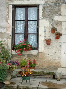 Flowers of Private Home, Burgundy, France by Lisa S. Engelbrecht