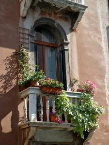 Flowers on Villa Balcony, Venice, Italy by Lisa S. Engelbrecht