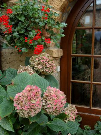 Geraniums and Hydrangea by Doorway, Chateau de Cercy, Burgundy, France