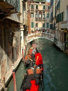 Gondolas along Canal, Venice, Italy by Lisa S^ Engelbrecht