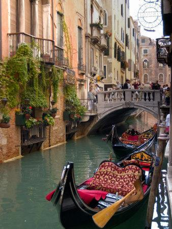 Gondolas Moored along Grand Canal, Venice, Italy