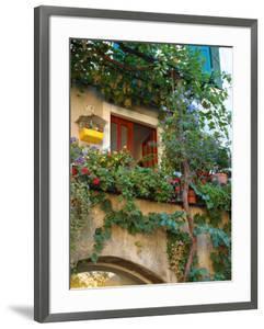 Grape Arbor and Flowers, Lake Garda, Malcesine, Italy by Lisa S^ Engelbrecht