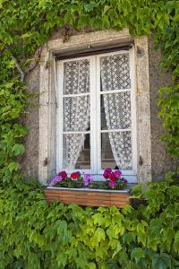 Quaint window, Cluny, Maconnaise, France by Lisa S. Engelbrecht