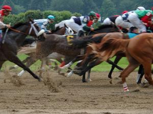 Race Horses in Action, Saratoga Springs, New York, USA by Lisa S. Engelbrecht