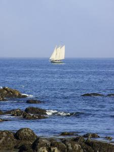Sailboat Along The Coast, Kennebunkport, Maine, USA by Lisa S. Engelbrecht