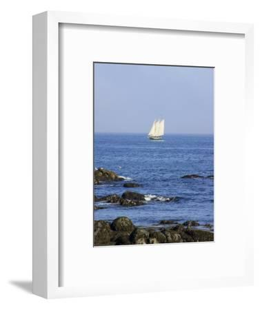 Sailboat Along The Coast, Kennebunkport, Maine, USA