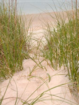 Smyrna Dunes Park, New Smyrna Beach, Florida