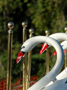 Swan Boats in Public Garden, Boston, Massachusetts by Lisa S. Engelbrecht