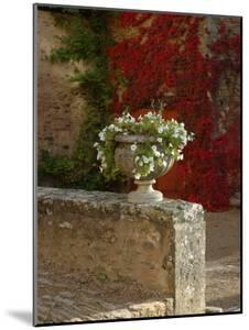 Urn of Petunias, Chateau de Pierreclos, Burgundy, France by Lisa S^ Engelbrecht