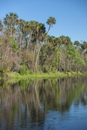 USA, Florida, Orange City, St. Johns River, Blue Spring State Park