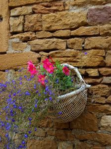 Wicker Basket of Flowers on Limestone Building, Burgundy, France by Lisa S. Engelbrecht