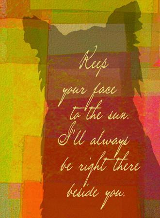 Keep Your Face To The Sun