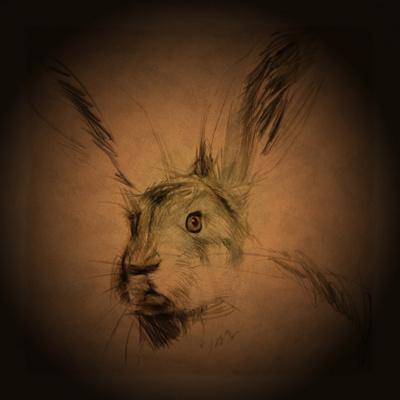https://imgc.artprintimages.com/img/print/listening-hare_u-l-pyytg60.jpg?p=0
