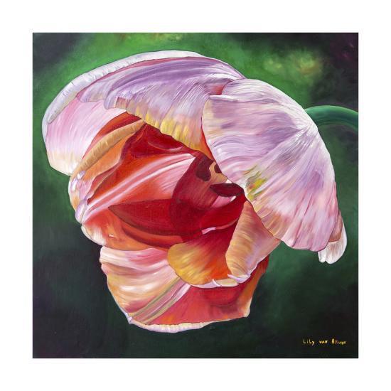 Lit Tulip 2-Lily Van Bienen-Giclee Print