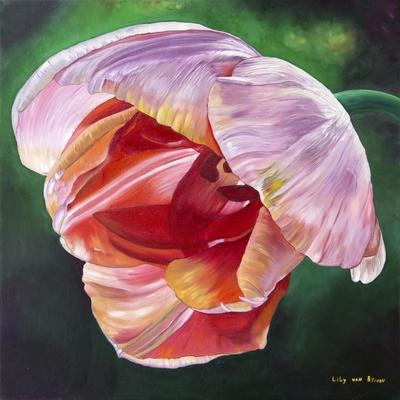 https://imgc.artprintimages.com/img/print/lit-tulip-2_u-l-pymisn0.jpg?p=0