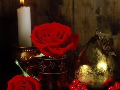 Lit White Candle in Gold Holder with Two Red Roses, Ilex Berries & Gold Pear Christmas Ornament-James Guilliam-Photographic Print