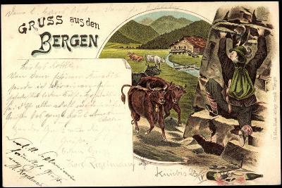 Litho Gruß Aus Den Bergen, Zerbrochene Weinflasche, Mann Flüchtet Vor Kühen--Giclee Print