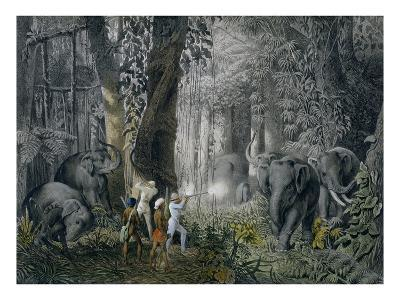 Lithograph of an Elephant Hunt After Graf Andrasy-Stapleton Collection-Giclee Print