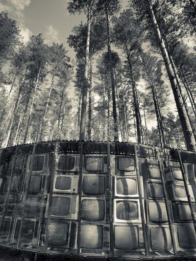 Lithuania, Vilnius-Area, Europos Parkas Sculpture Park, Lnk Infotree by Gintaras Karosas, 2001, Wor-Walter Bibikow-Photographic Print