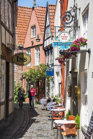 https://imgc.artprintimages.com/img/print/little-alleys-in-the-old-schnoor-quarter-bremen-germany-europe_u-l-psm14a0.jpg?p=0