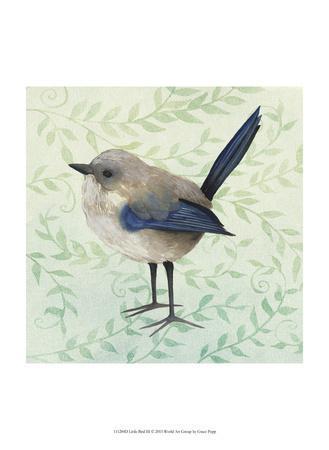Little Bird III-Grace Popp-Art Print