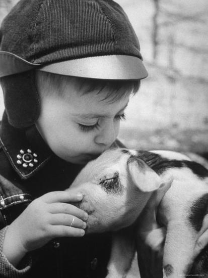 Little Boy Playing with Piglet on Farm in Kansas-Francis Miller-Photographic Print