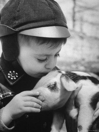 https://imgc.artprintimages.com/img/print/little-boy-playing-with-piglet-on-farm-in-kansas_u-l-p3ni9h0.jpg?p=0