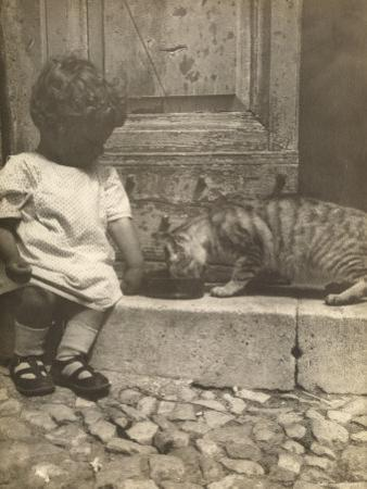 Little Boy Sitting on a Doorstep Next to a Cat