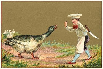 Little Chef Luring Goose--Art Print
