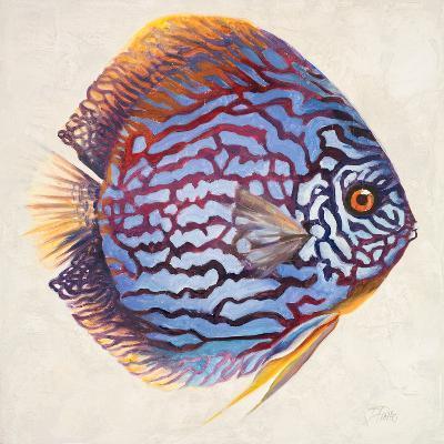 Little Fish I-Patricia Pinto-Premium Giclee Print