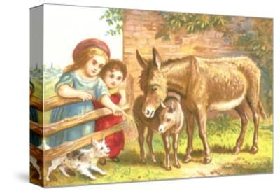 Little Girls Feeding Donkeys
