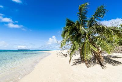 Little Island with a White Sand Beach in Ha'Apai Islands, Tonga, South Pacific-Michael Runkel-Photographic Print