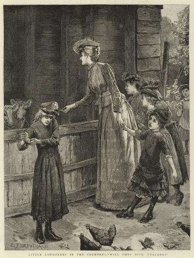 Little Londoners in the Country, Will They Bite, Teacher?-Edward Frederick Brewtnall-Giclee Print