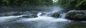 Little Pigeon River, Great Smoky Mountains National Park, Tennessee, North Carolina, USA