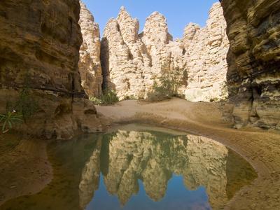 https://imgc.artprintimages.com/img/print/little-pool-in-the-essendilene-gorge-near-djanet-southern-algeria-north-africa-africa_u-l-pfk5bs0.jpg?p=0